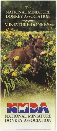 A scan of the pamphlet from the National Miniature Donkey Association